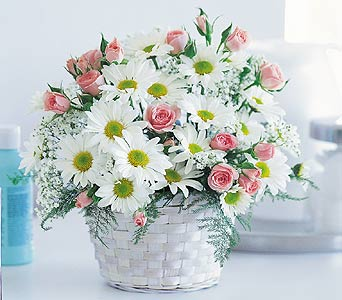 Toronto new baby gifts new baby gift baskets new baby flowers gift baskets flowers and gifts negle Gallery